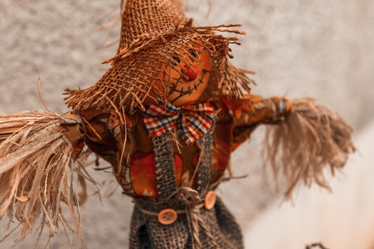 scarecrow - autumn decoration