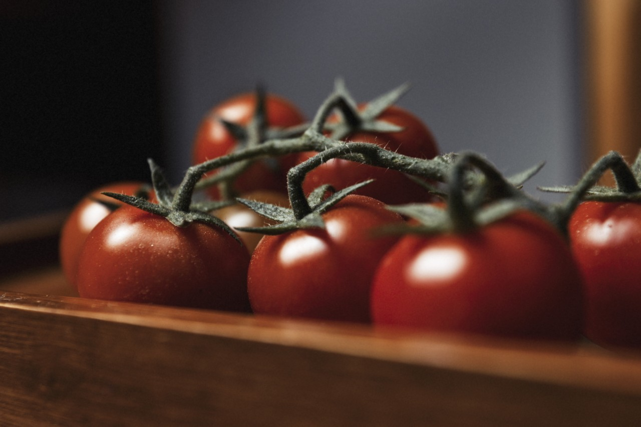 Small red cherry tomatoes on rustic background