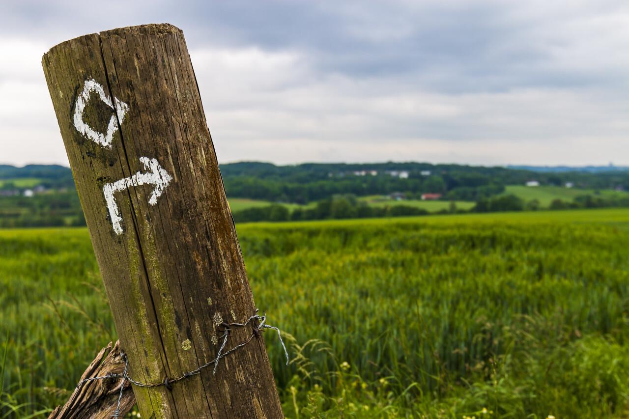 signpost rural landscape