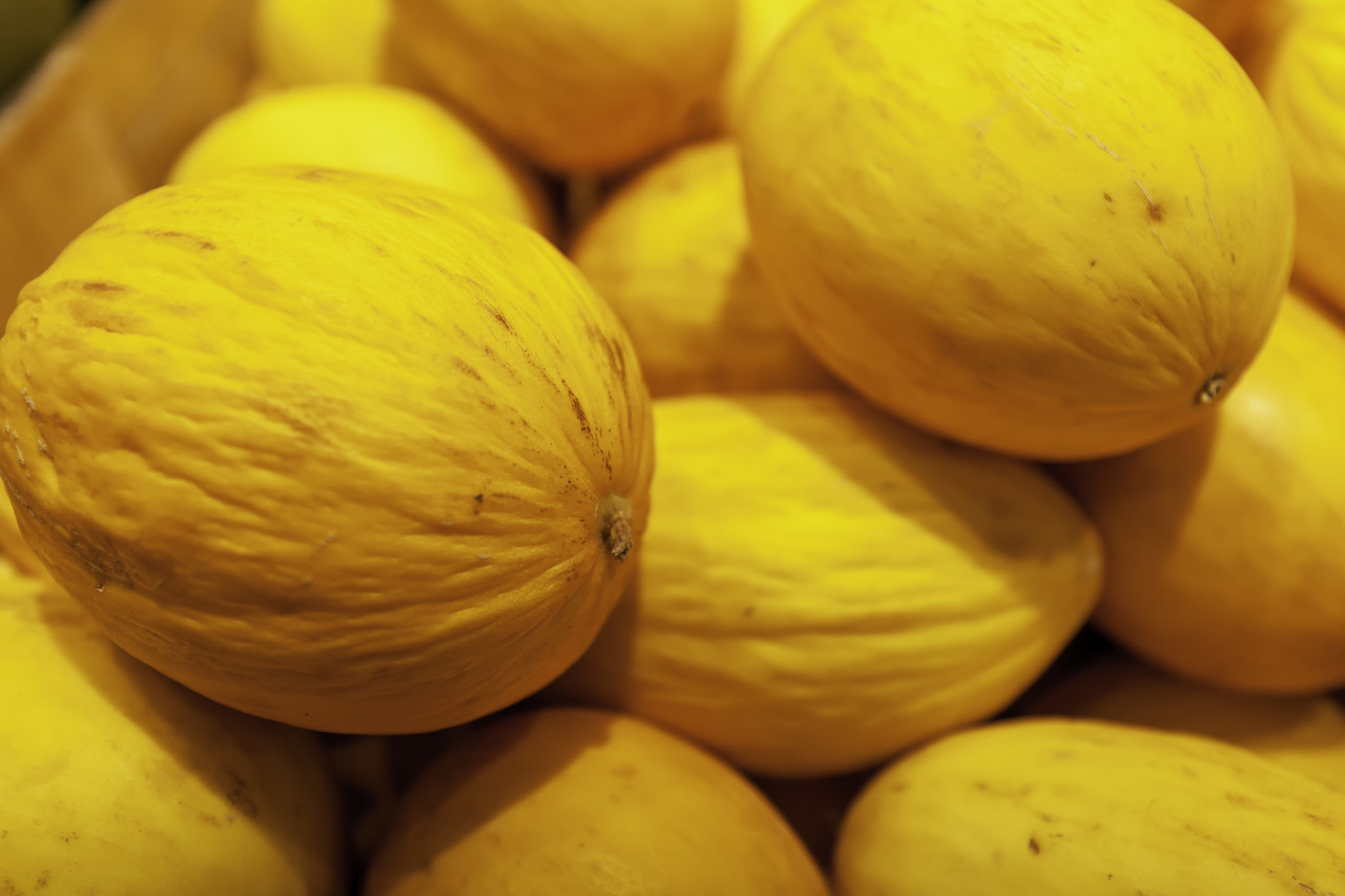 honey melons at the market stall