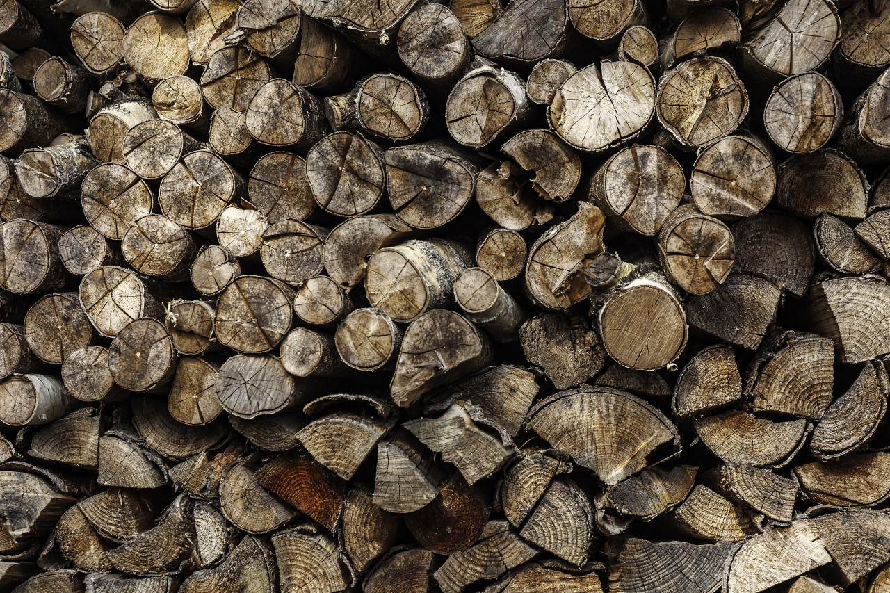pile of chopped fire wood background
