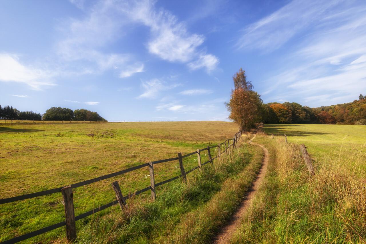 Rural Landscape in Germany