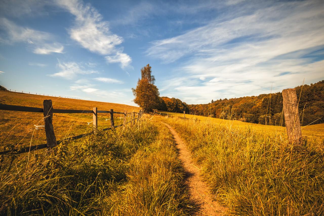 German rural landscape
