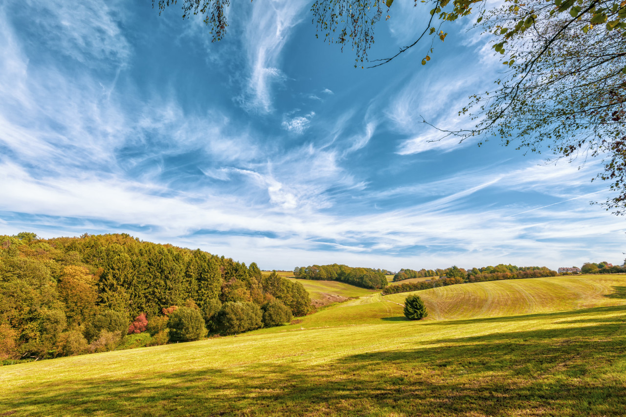 rural landscape with field and blue sky, wuppertal ronsdorf, nrw germany
