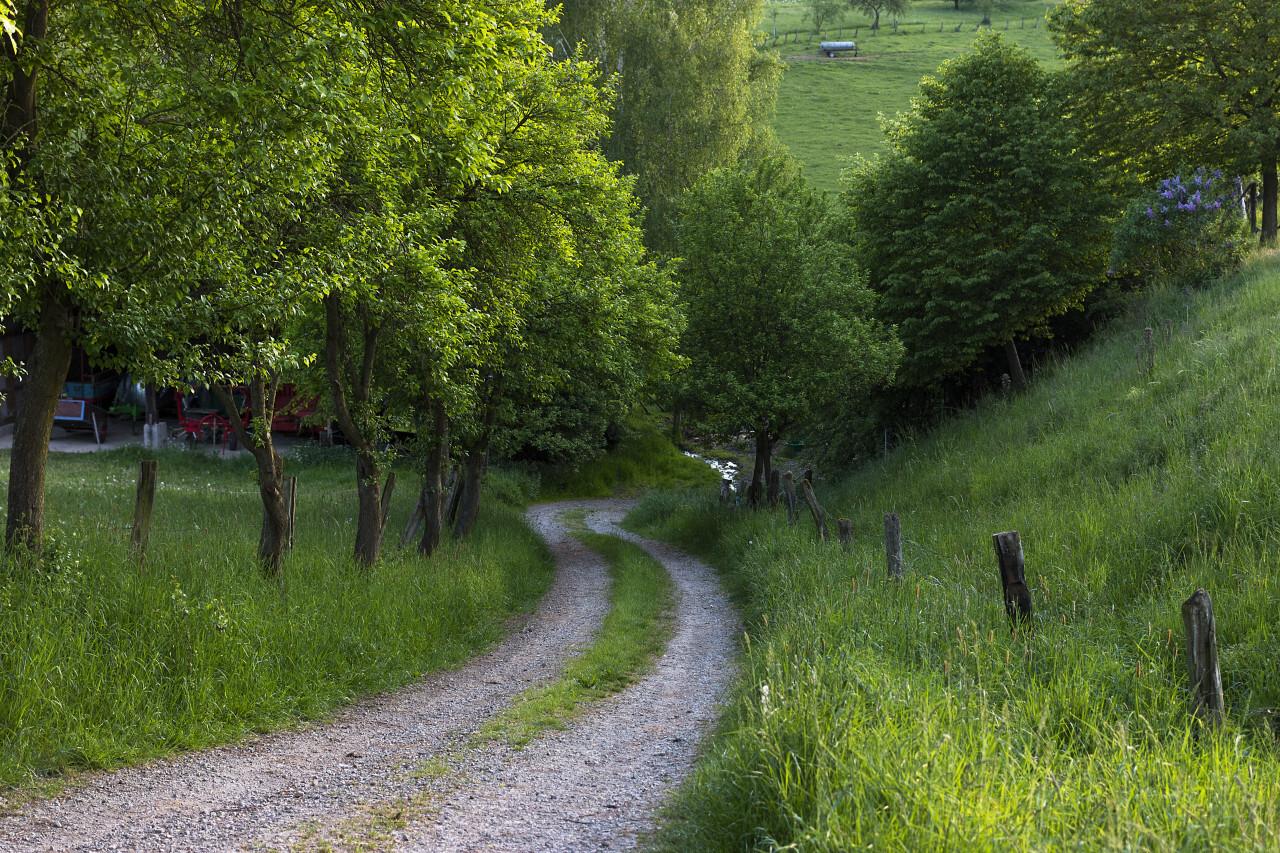 track across the fields in germany