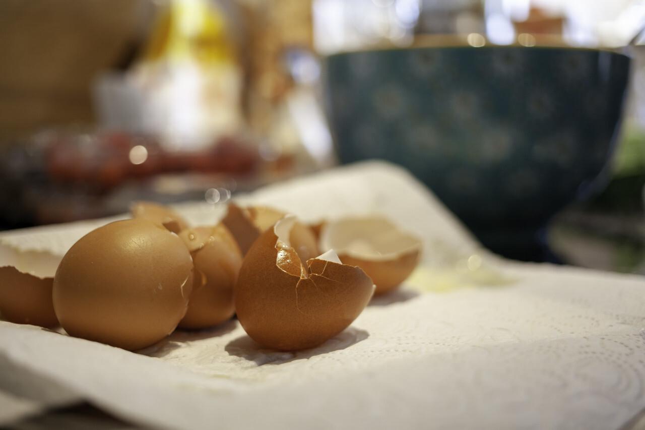 Empty broken eggshells in a kitchen