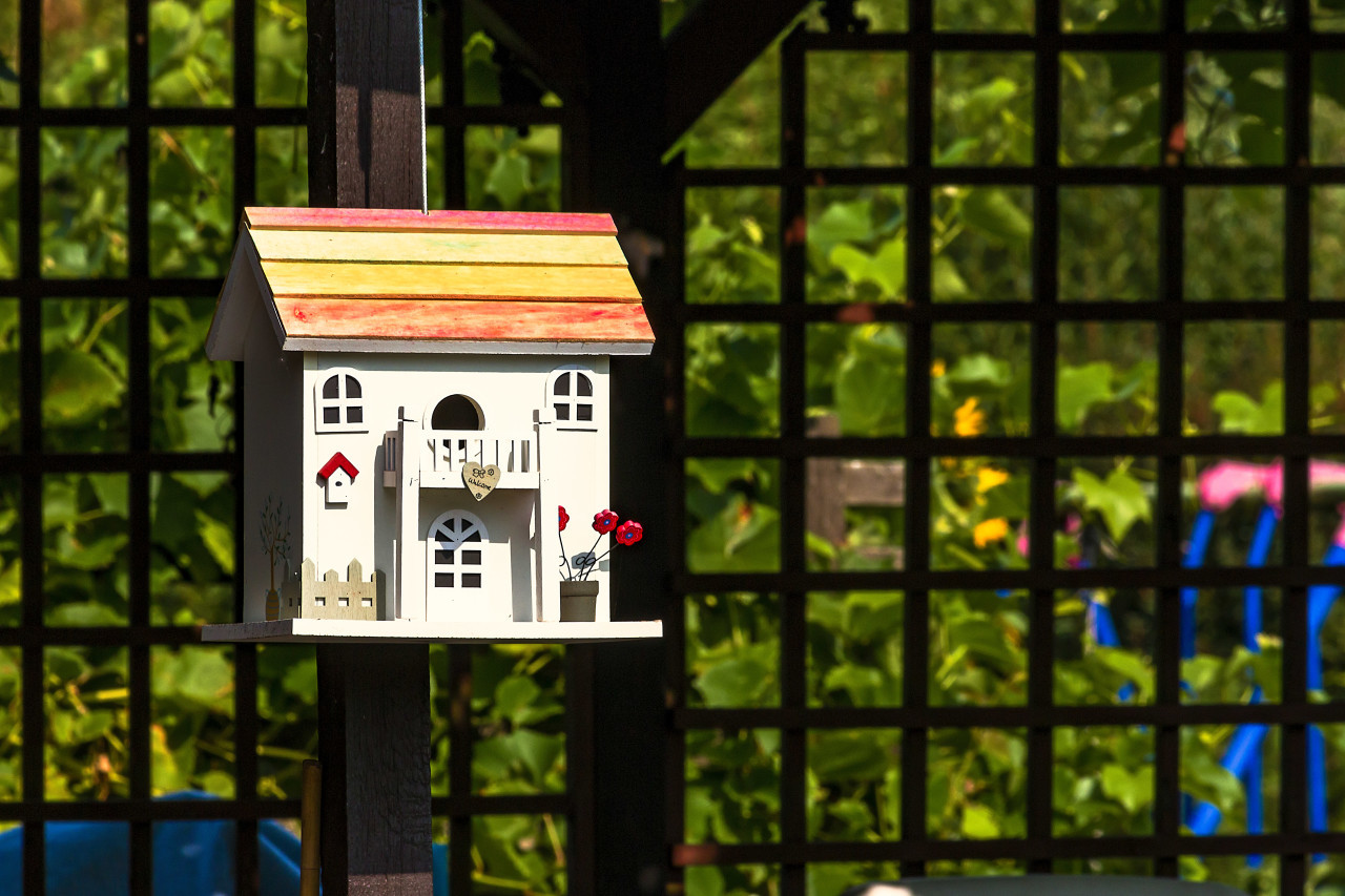 beautiful bird house with colorful roof