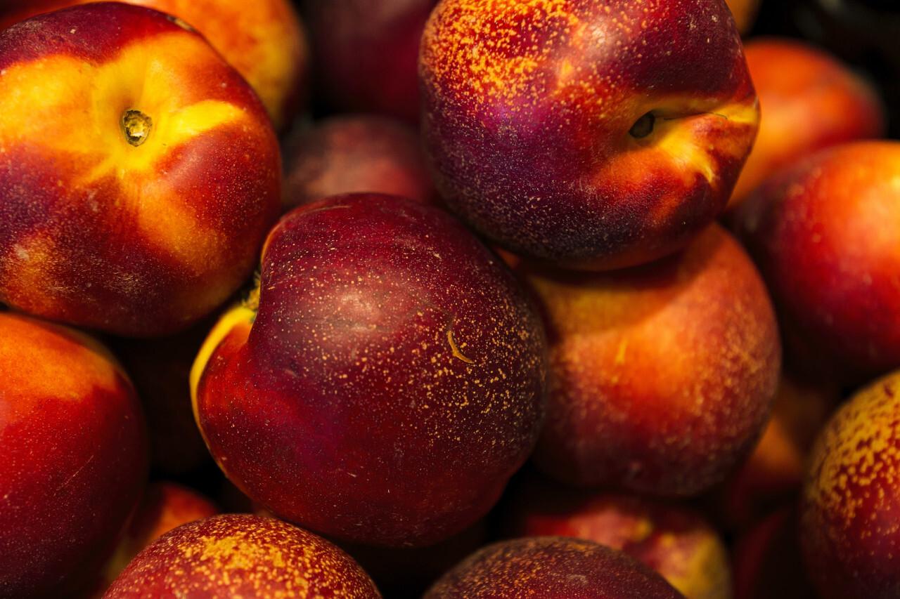 large amount of nectarines