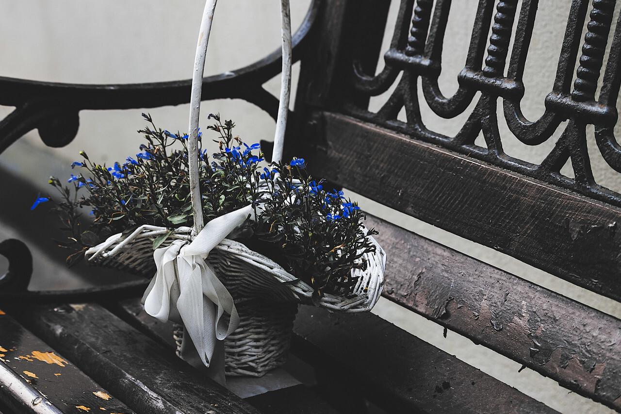 flower basket on park bench