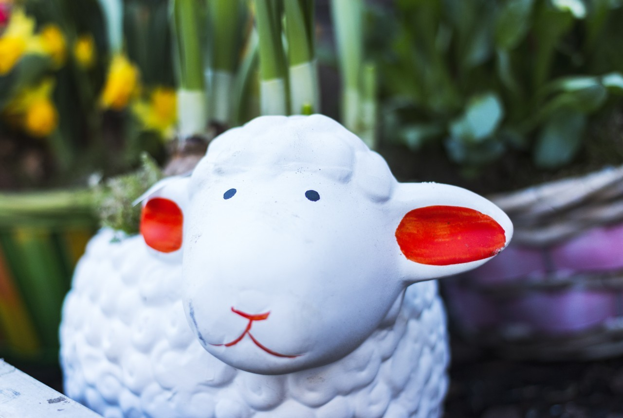 easter decoration sheep