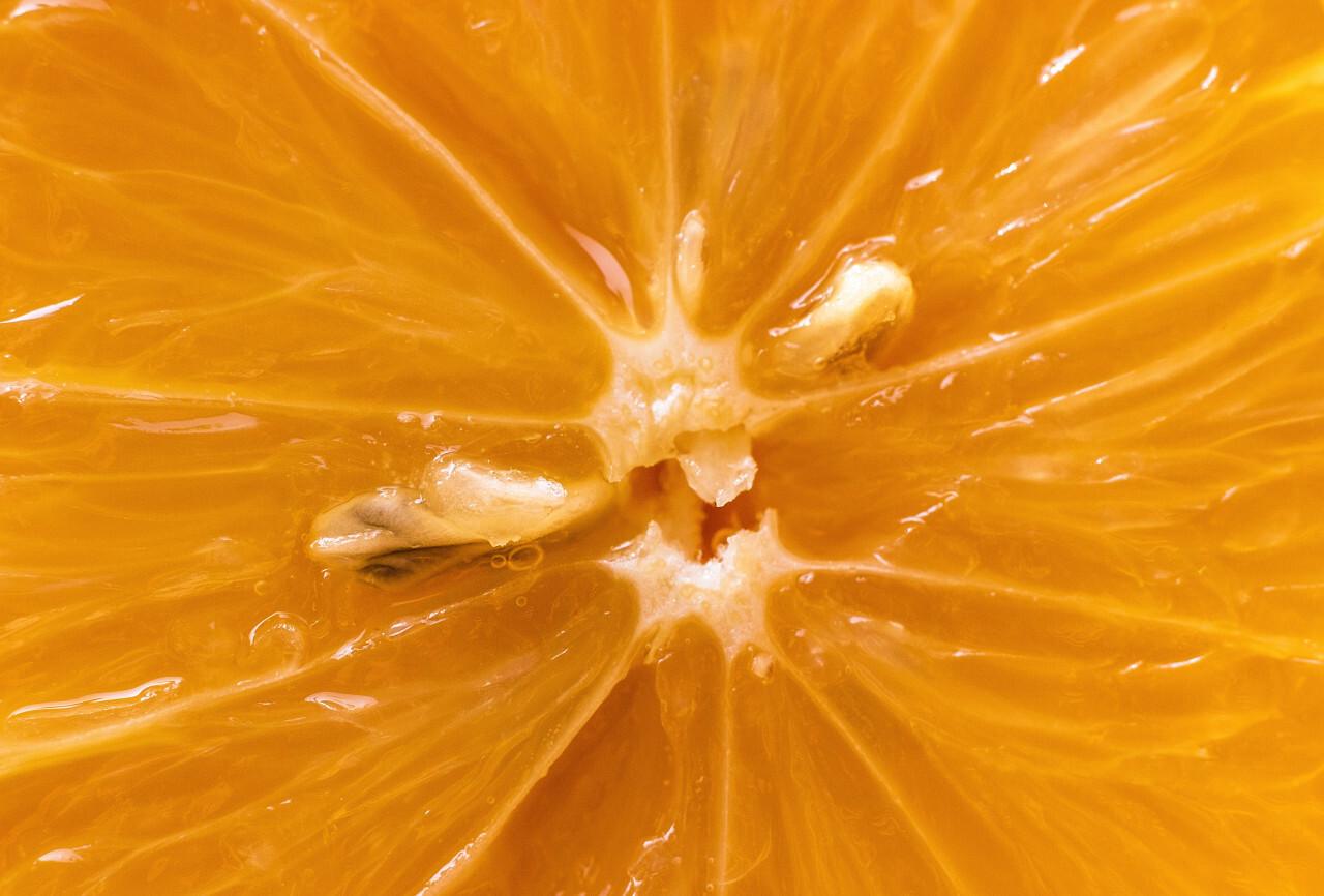 yellow lemon macro background