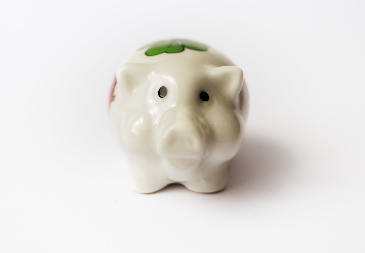 Lucky charm pig isolated on white background