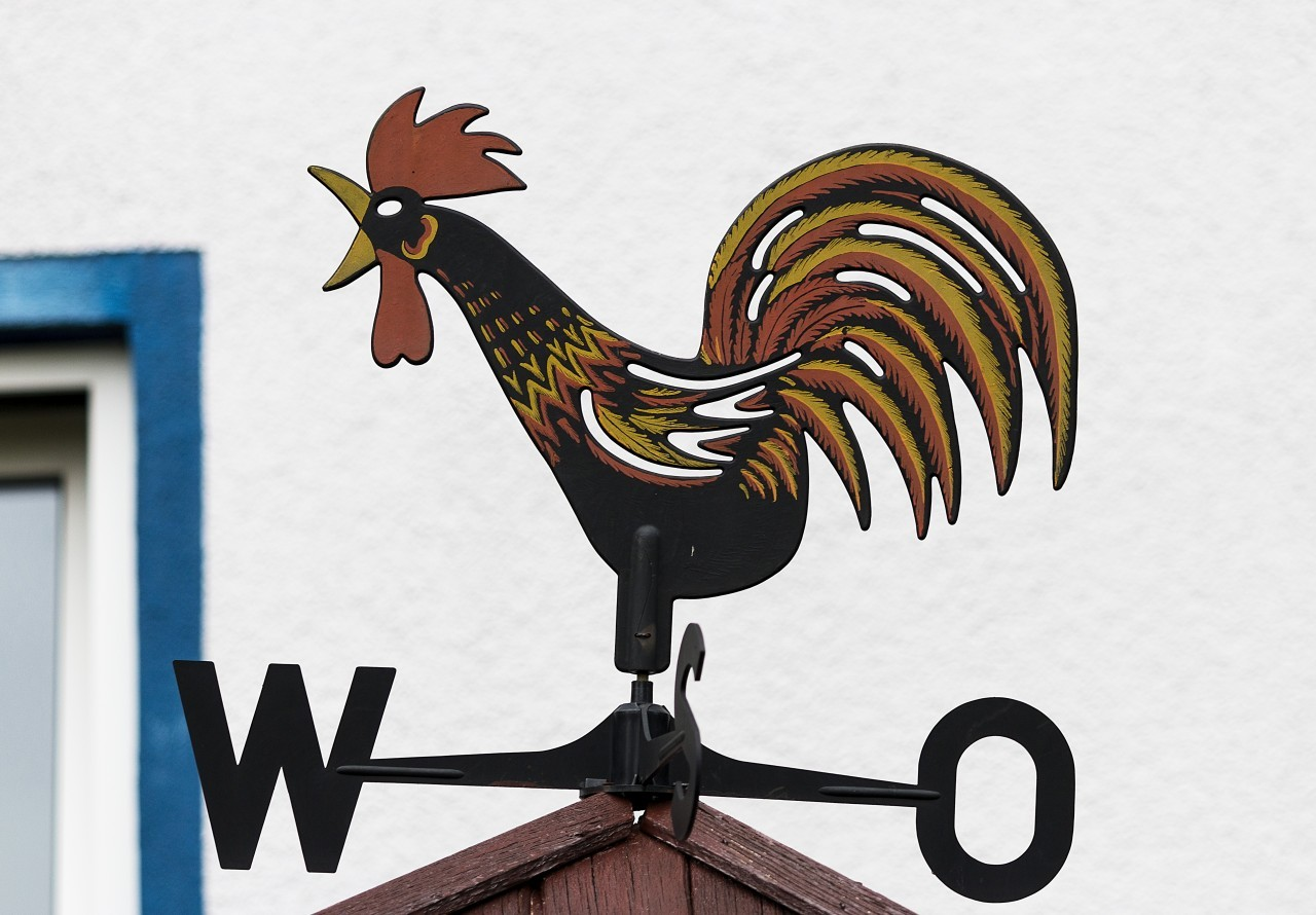 Wind cock sign