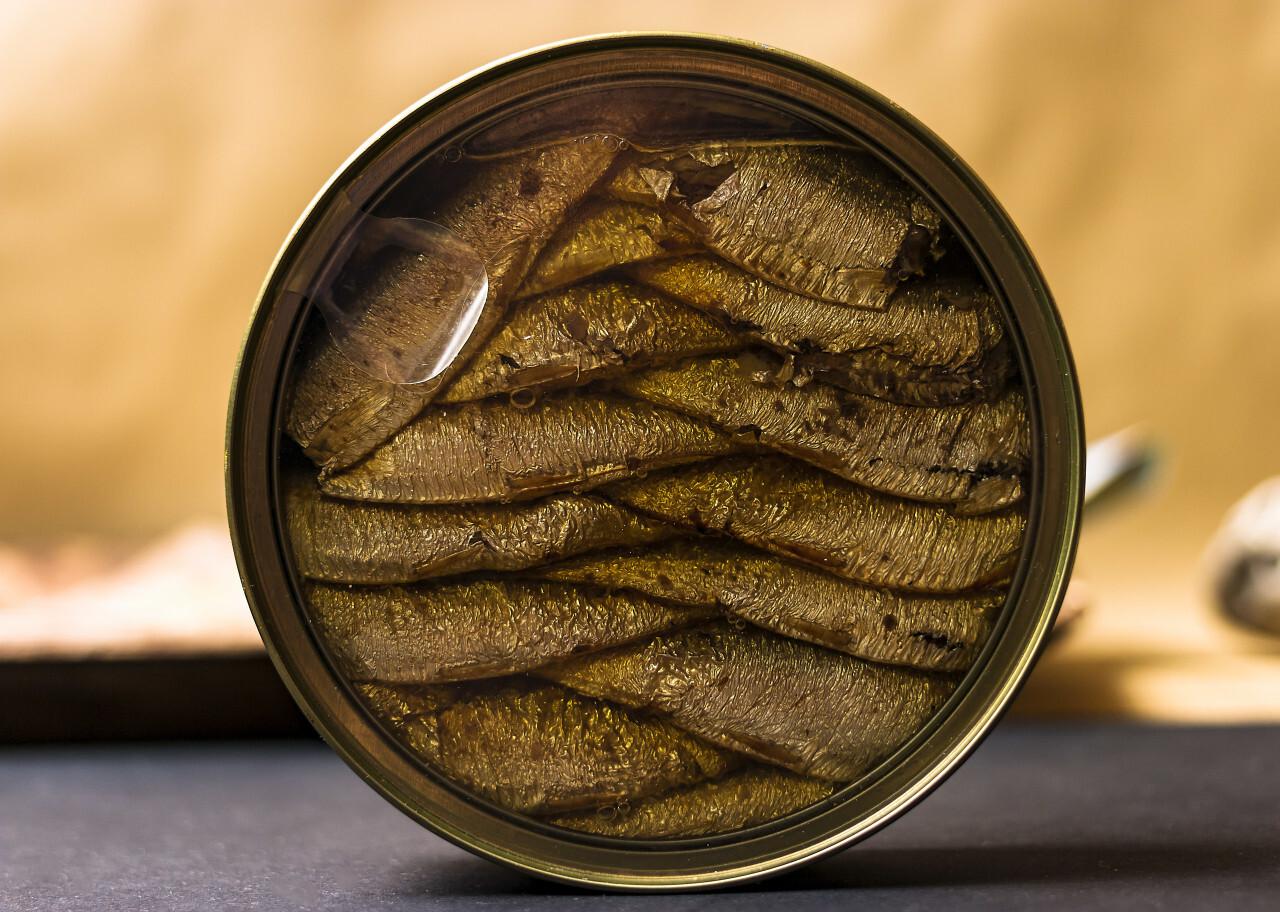 smoked sprats in tin