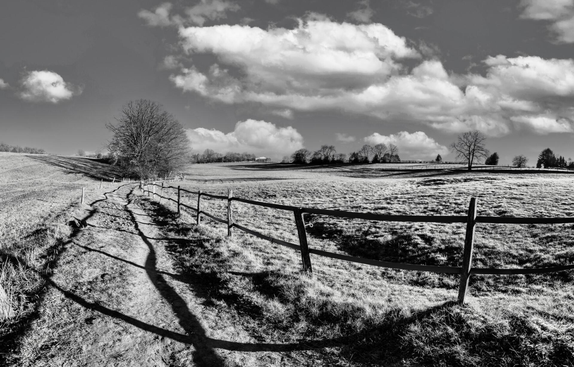 Rural landscape in blacknwhite