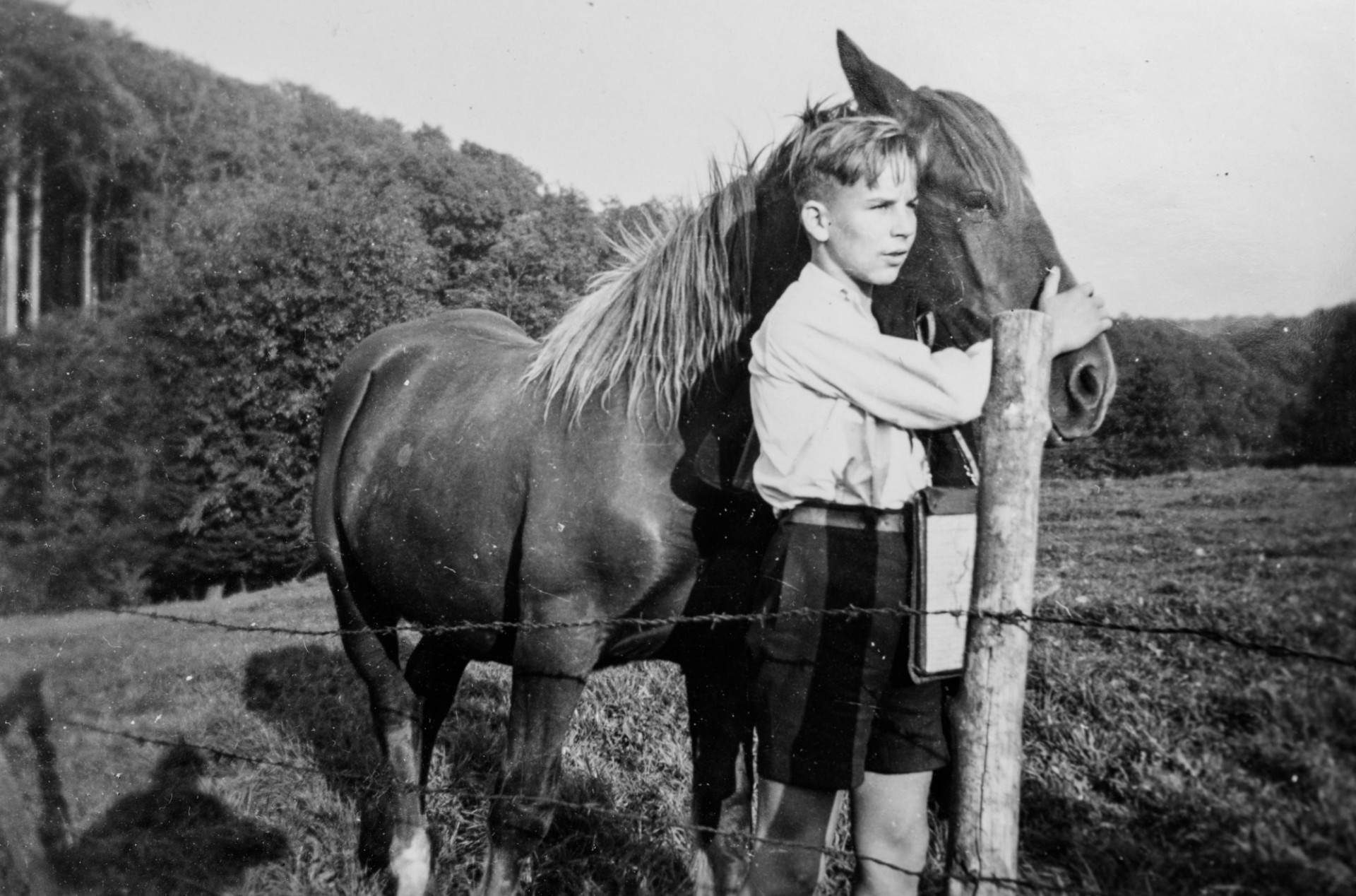 Boy with horse - 1950 in Germany