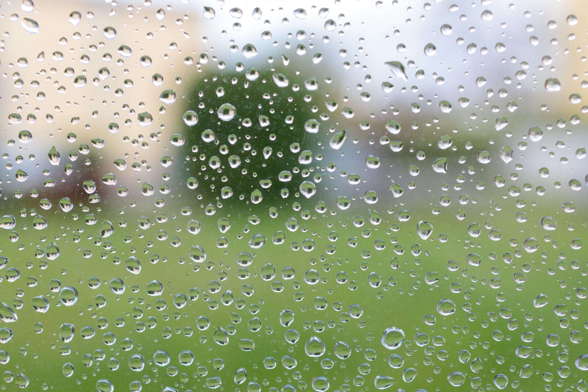 Raindrops on window pane