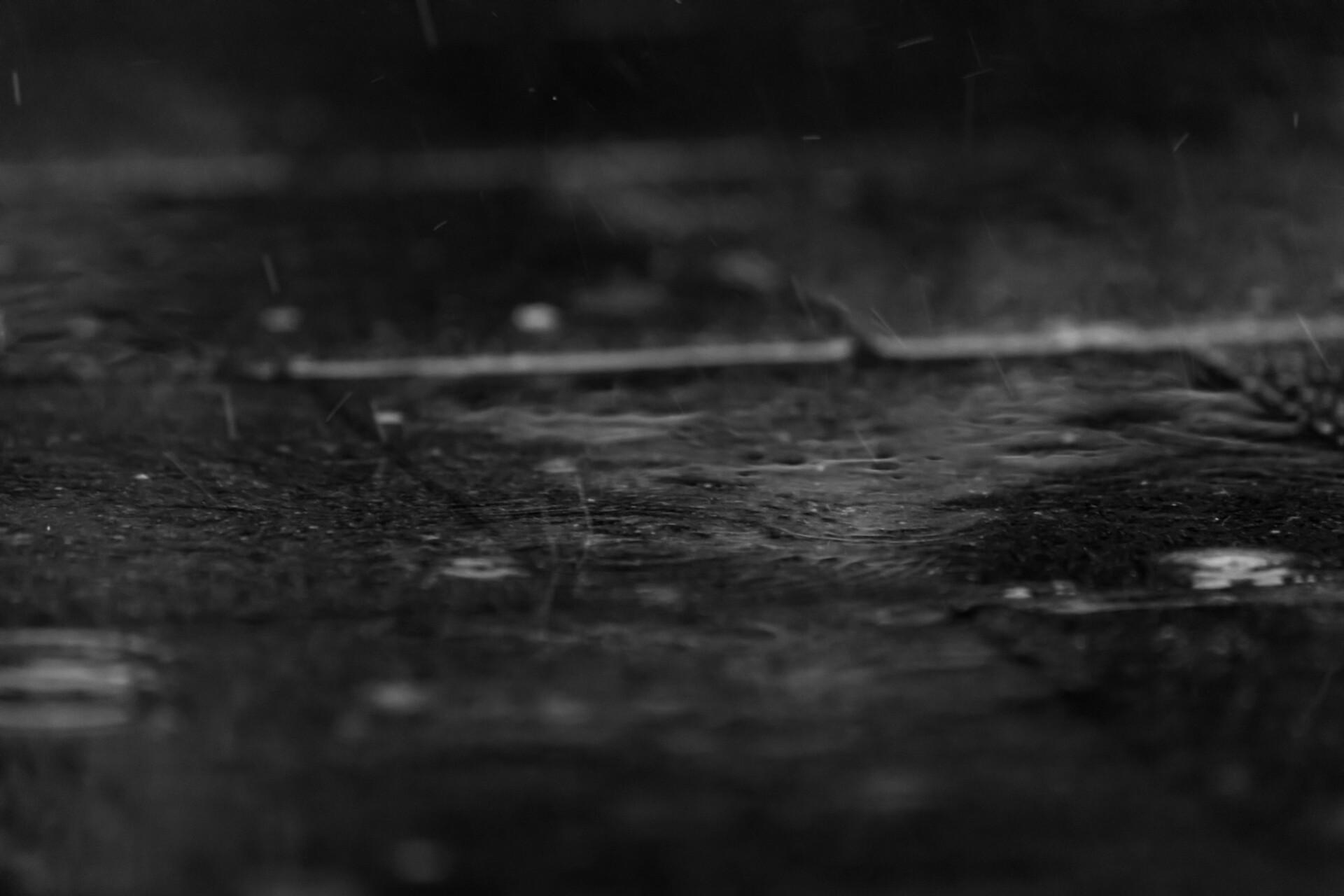rain puddle black and white
