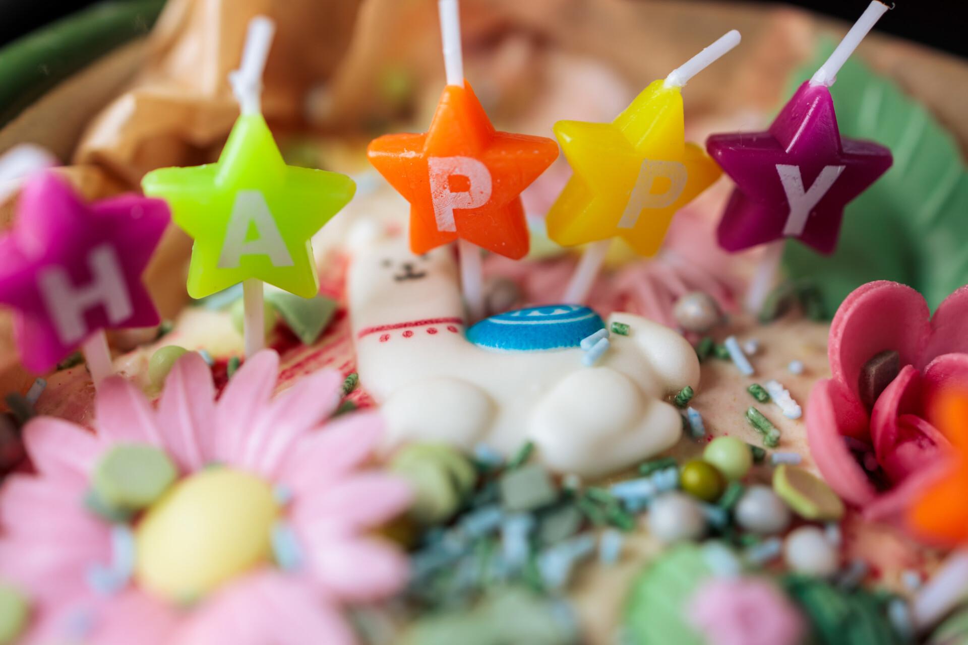 Children's happy birthday cake candles