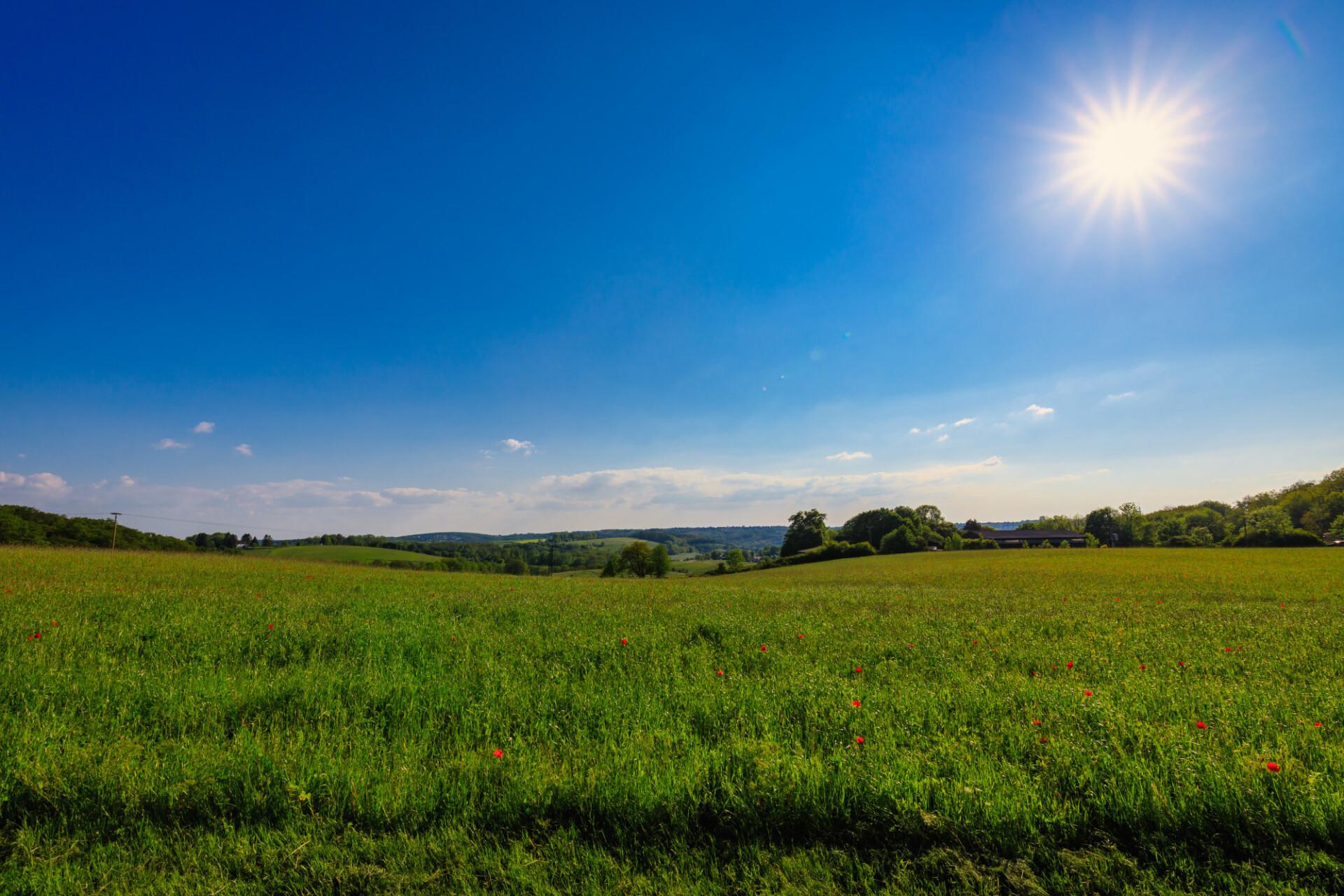 Northern European Rural Landscape