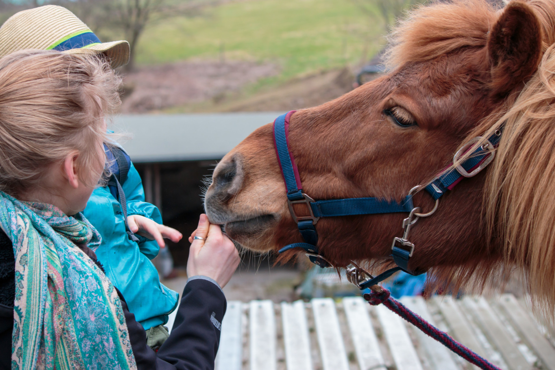 Mother and child stroking a pony