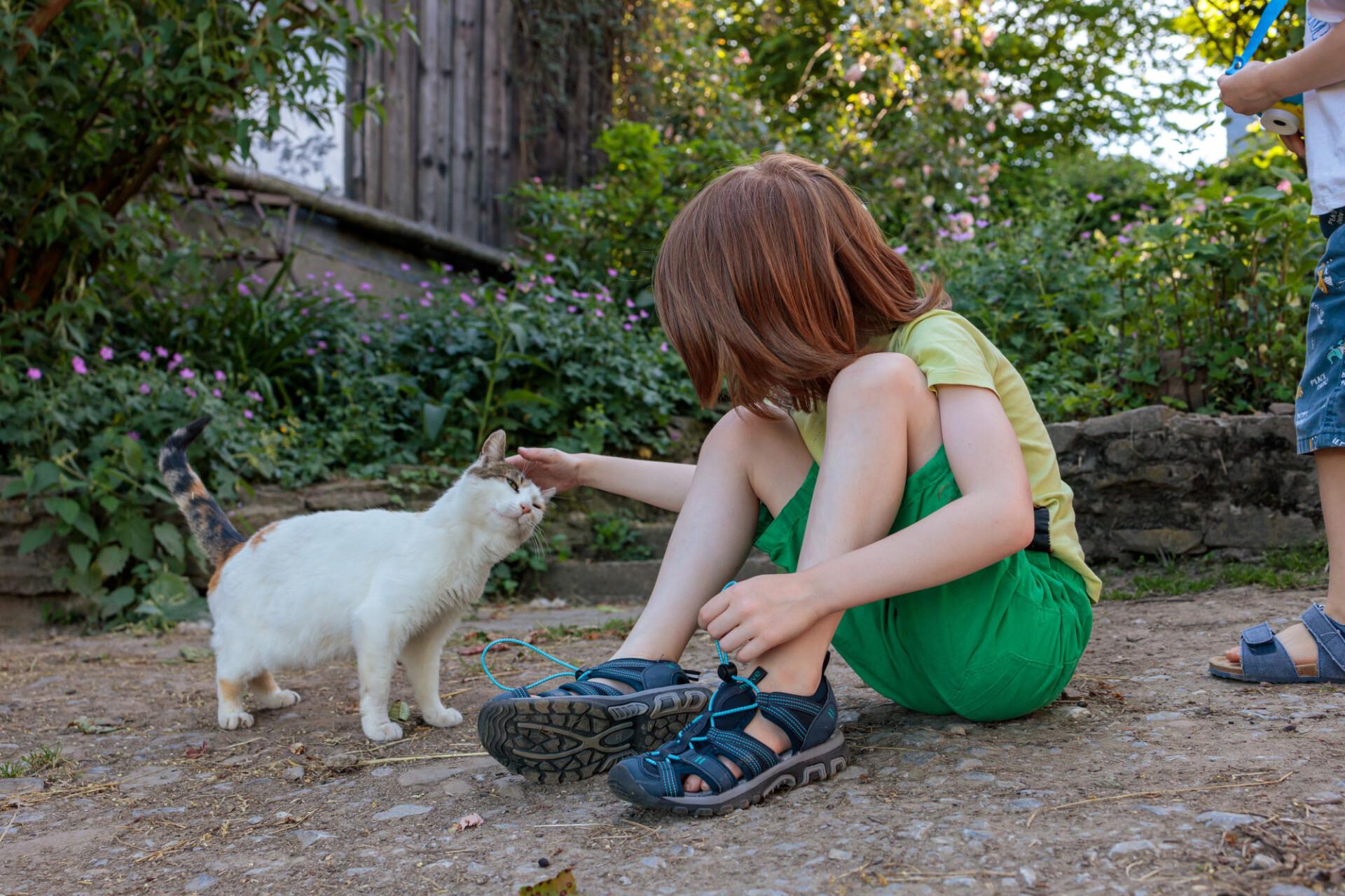 Little boy stroking a cat