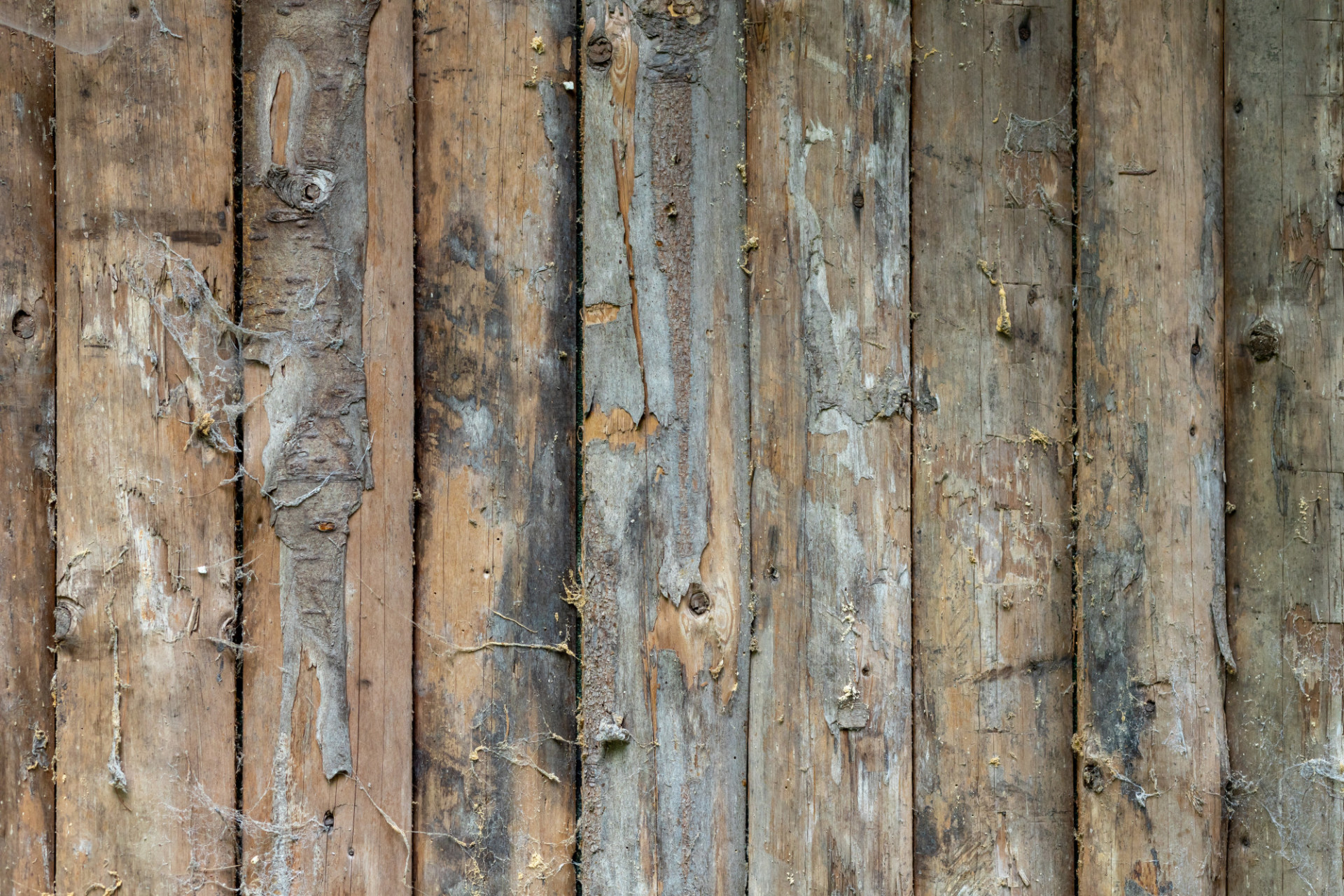 dirty old wood texture