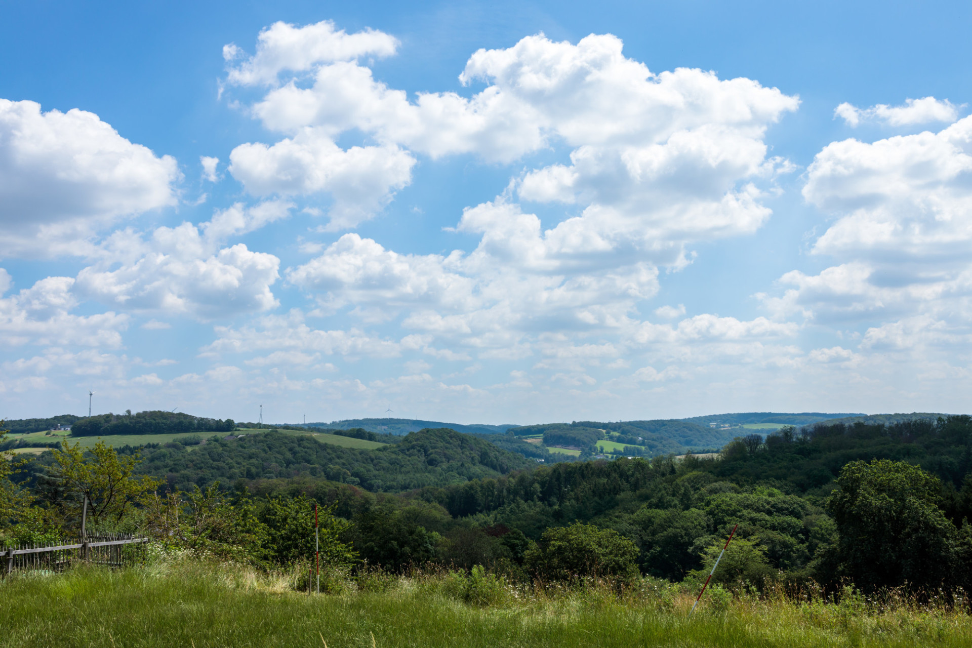 Hilly rural landscape
