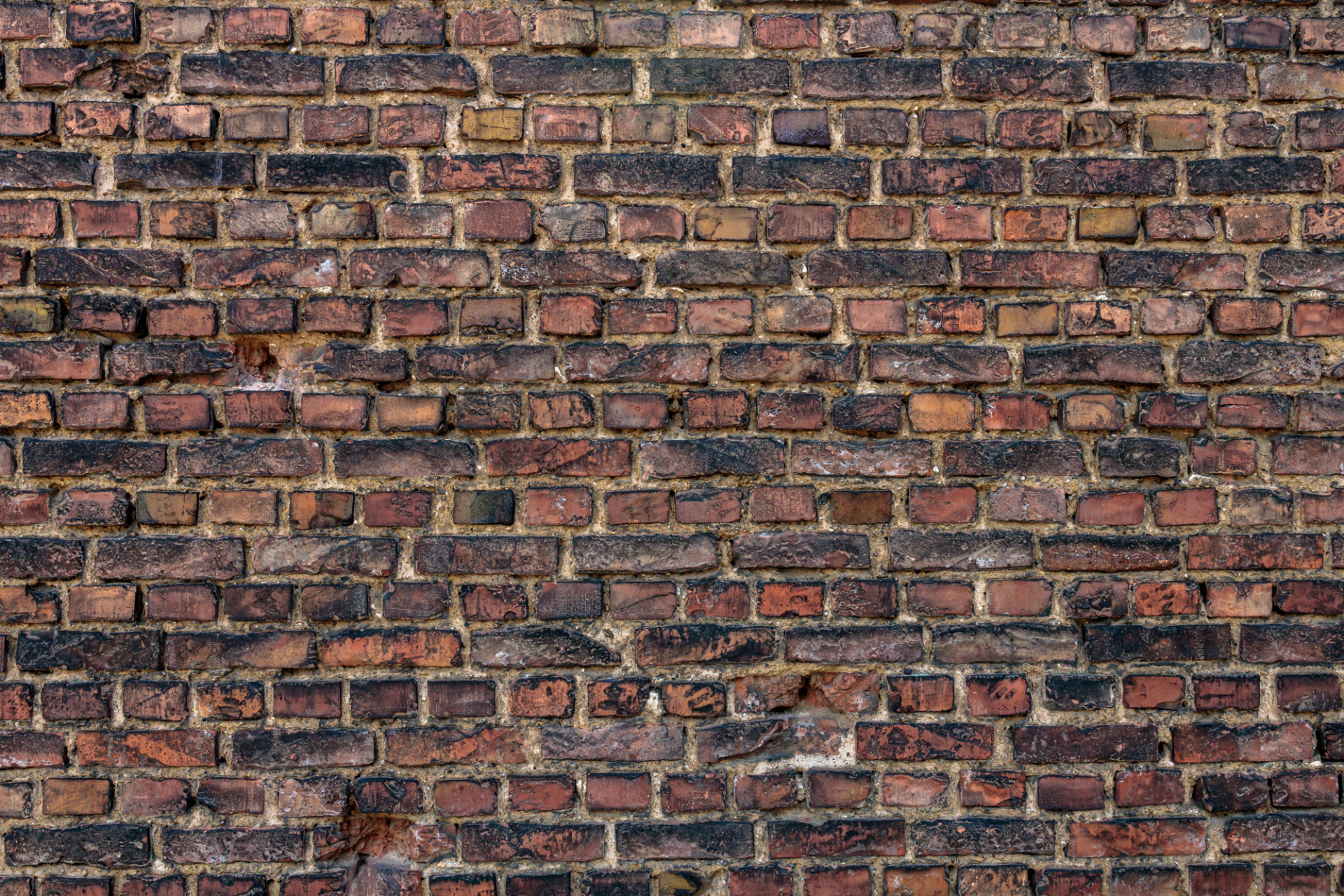 wide zoomed out brick wall texture