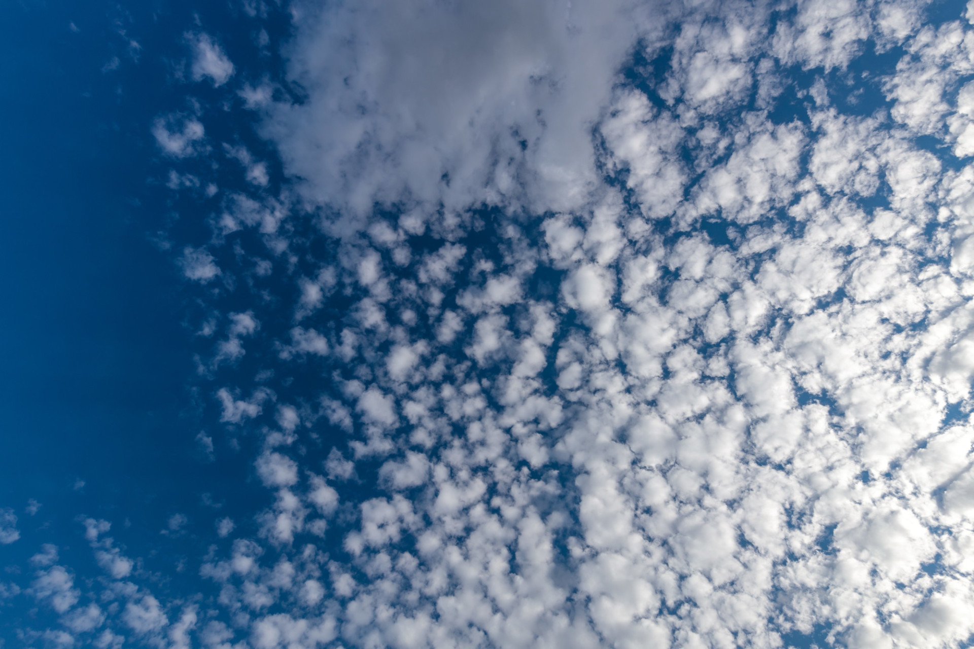 Blue Sky with white clouds for Sky Replacement