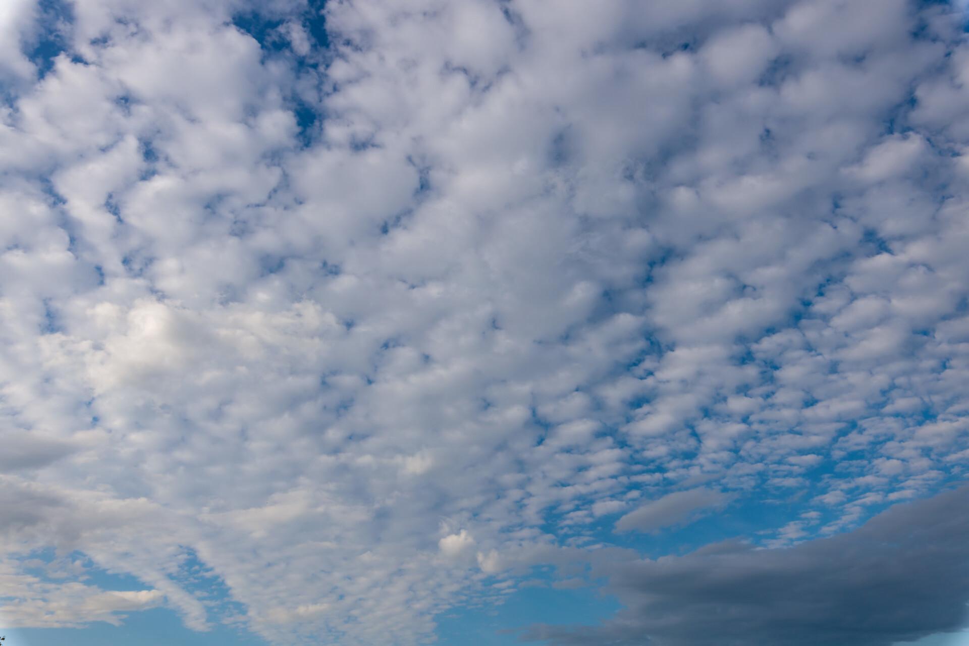Beautiful carpet of clouds in the sky