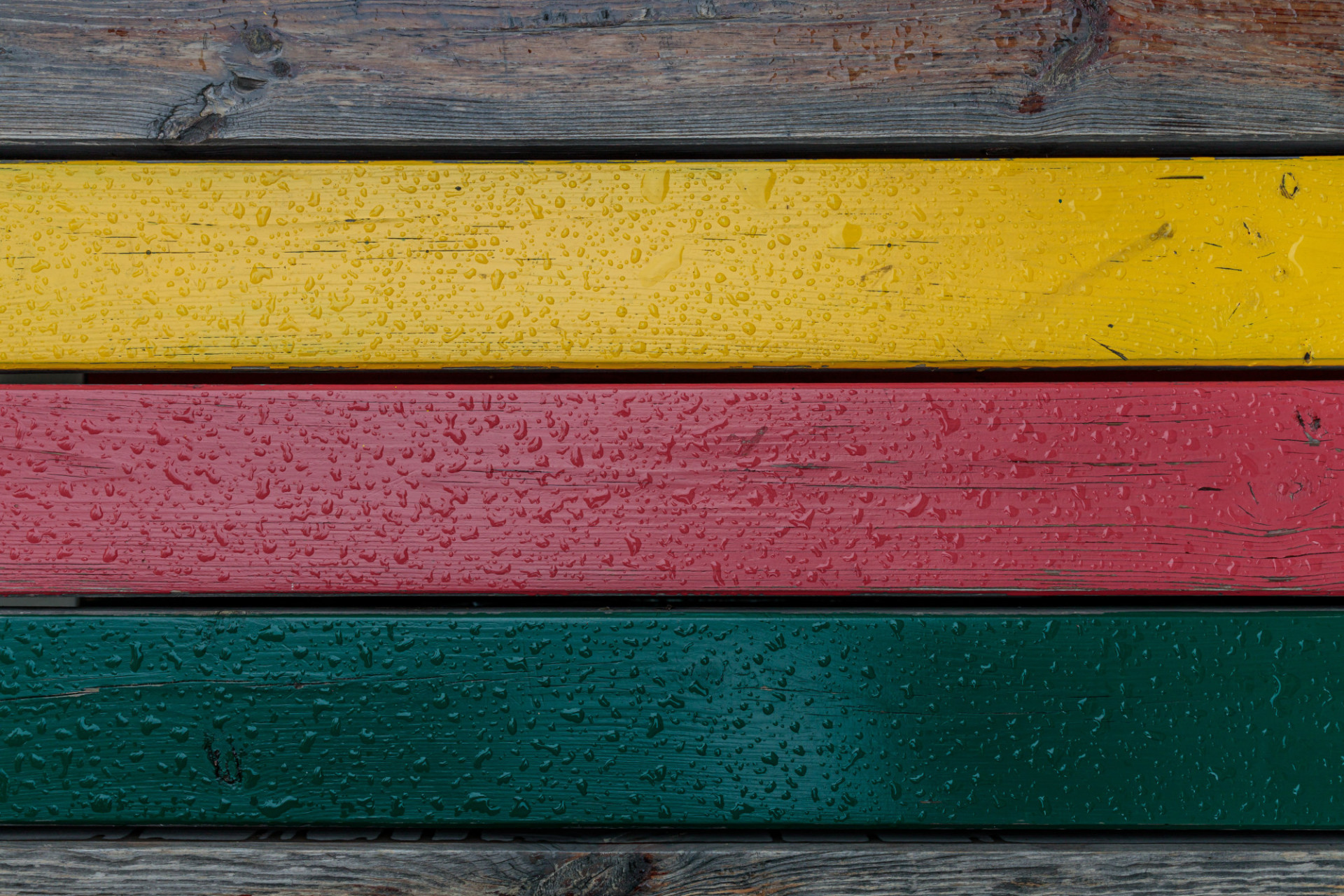 Rain wet motley wooden wall texture