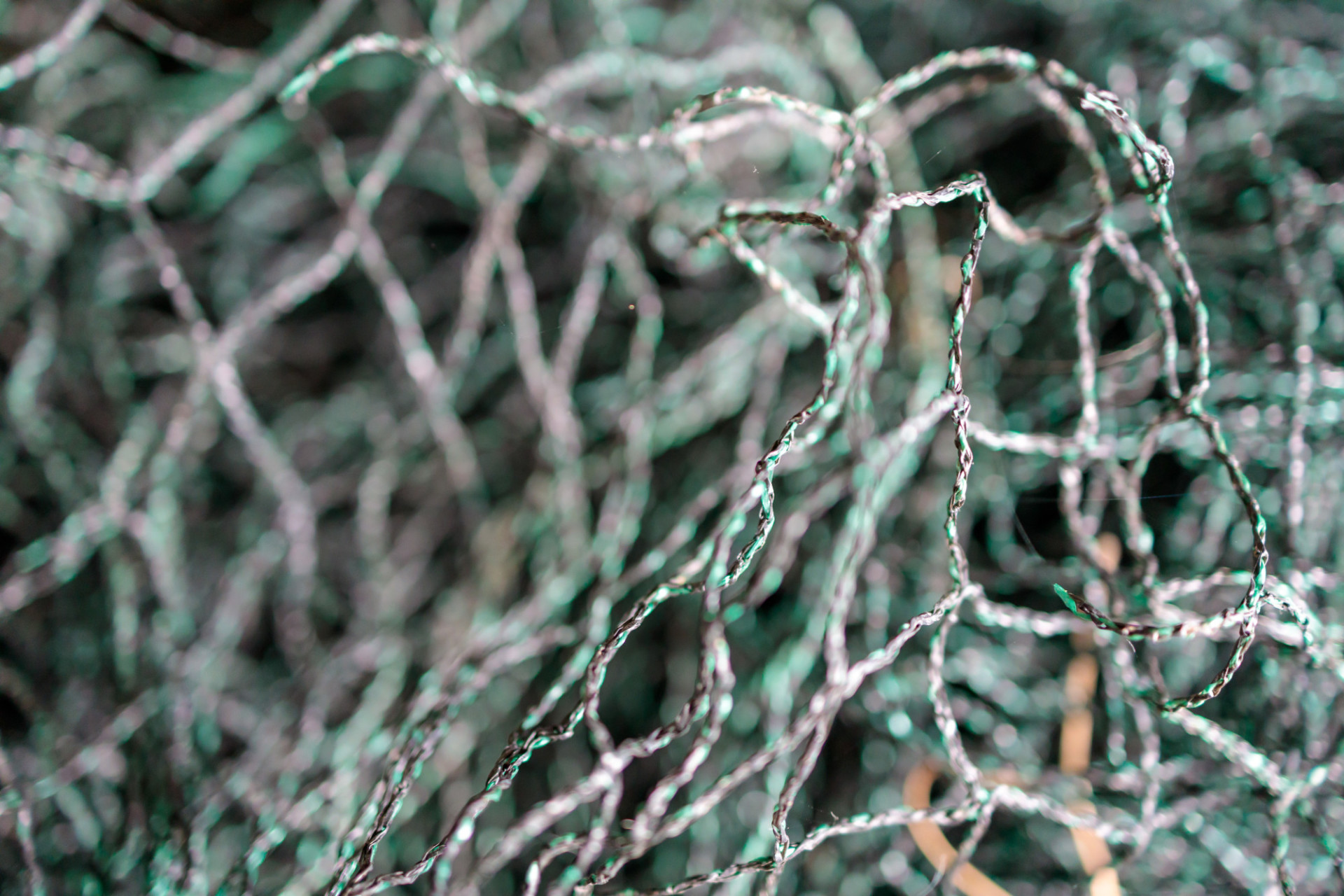 Fishing net from the near