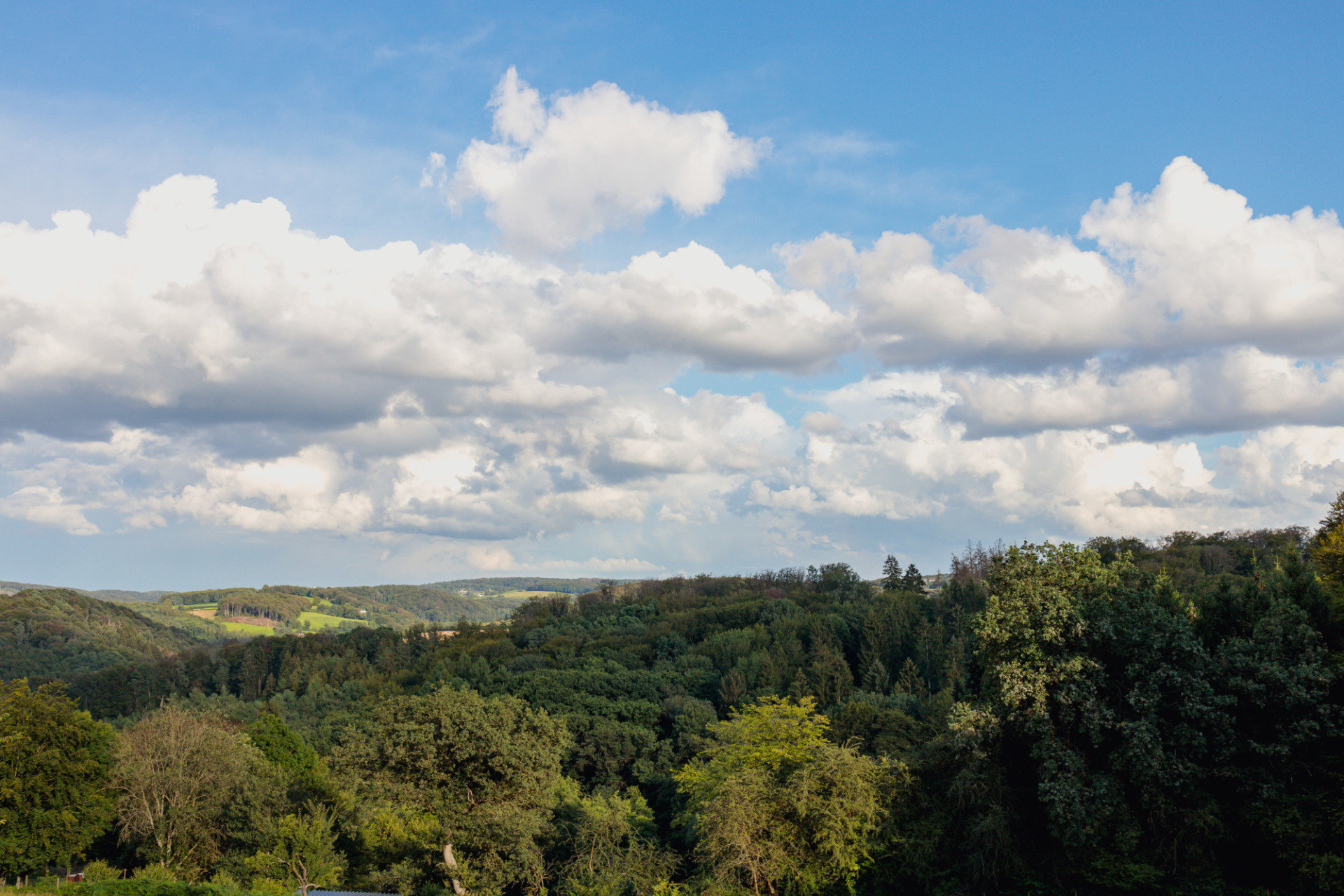 German forest landscape with beautiful clouds