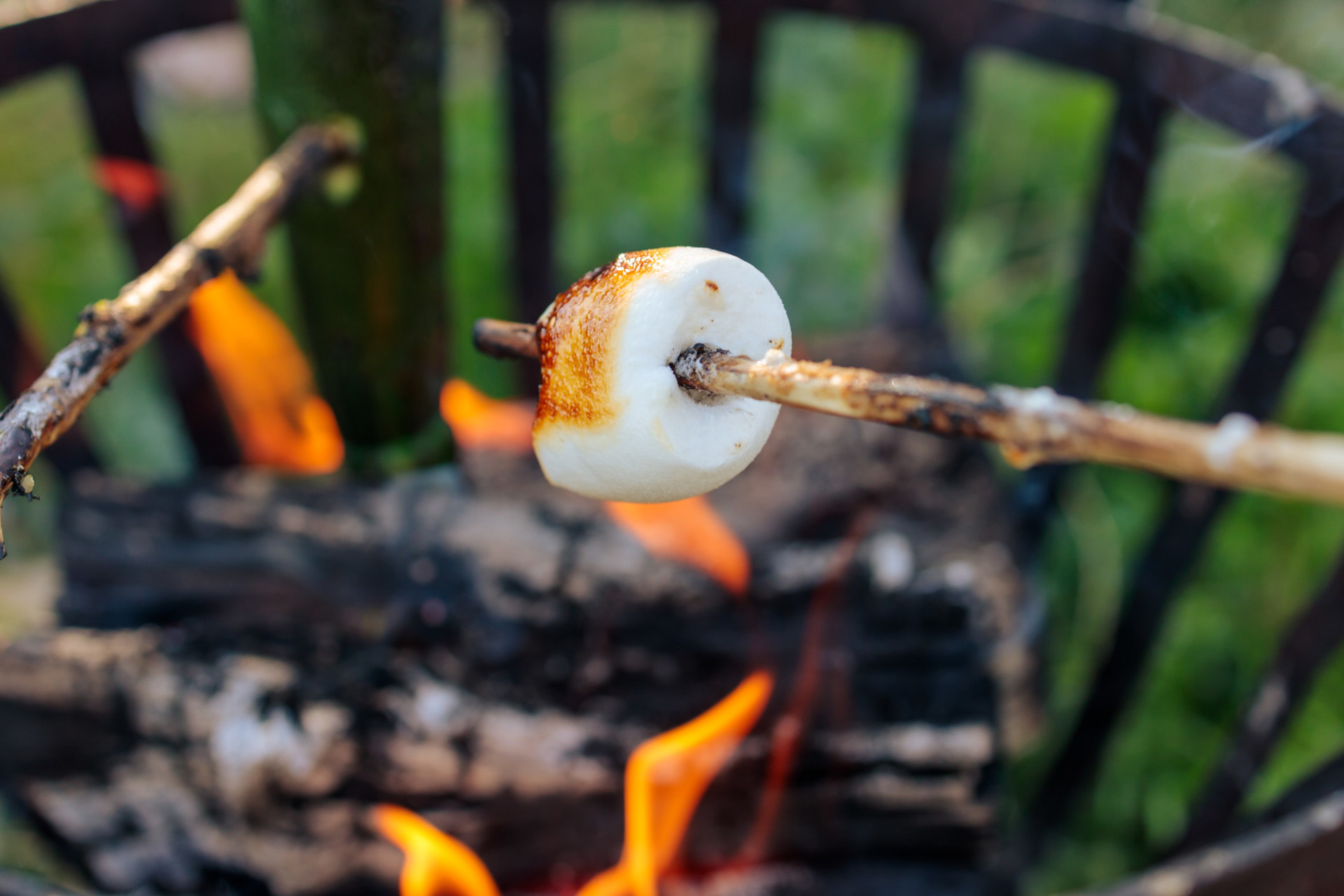 Marshmellow on skewer grilled over fire