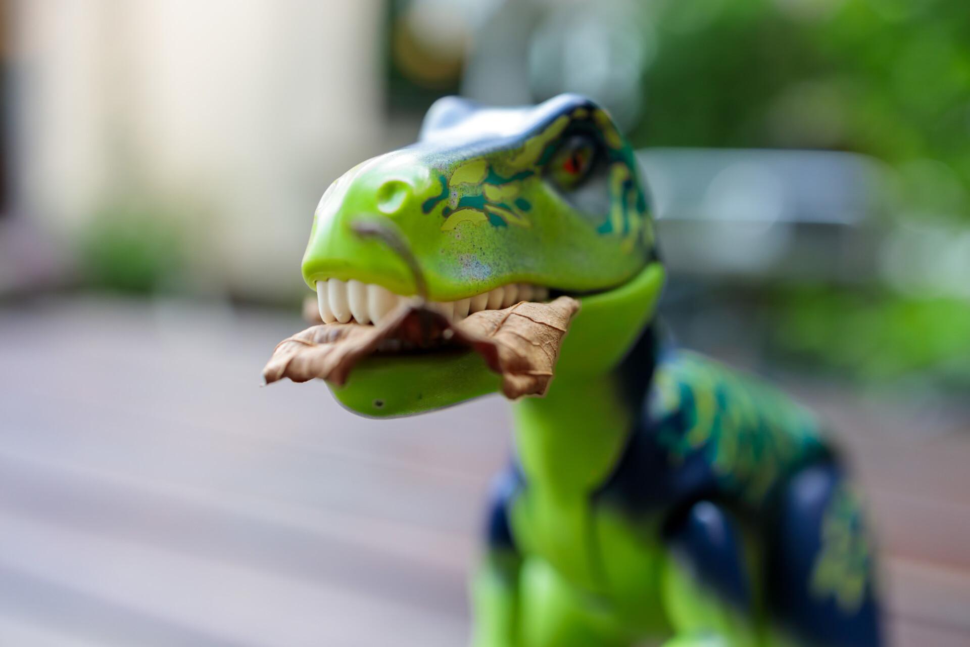 Toy T-Rex