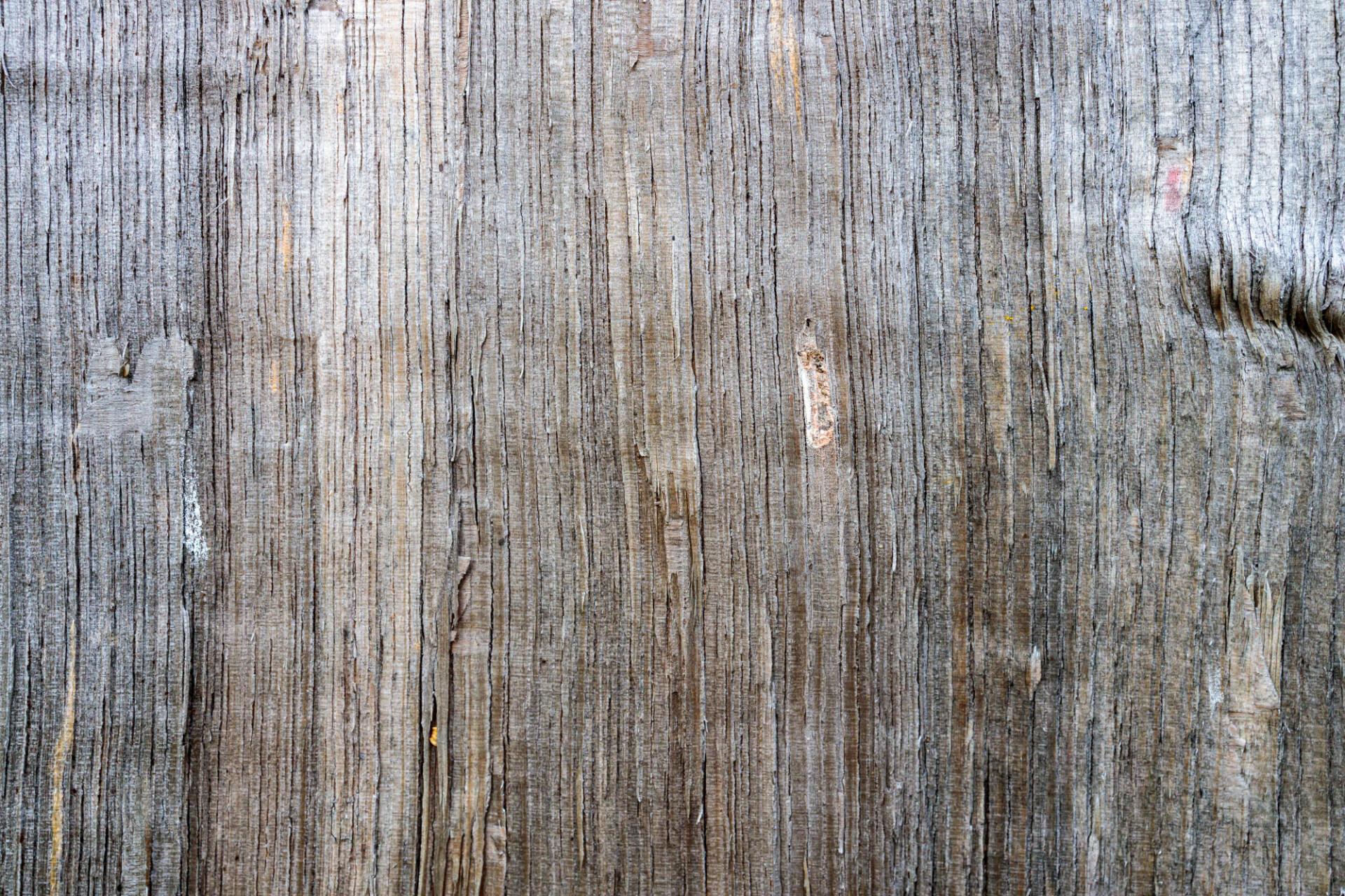 Rough natural wood texture
