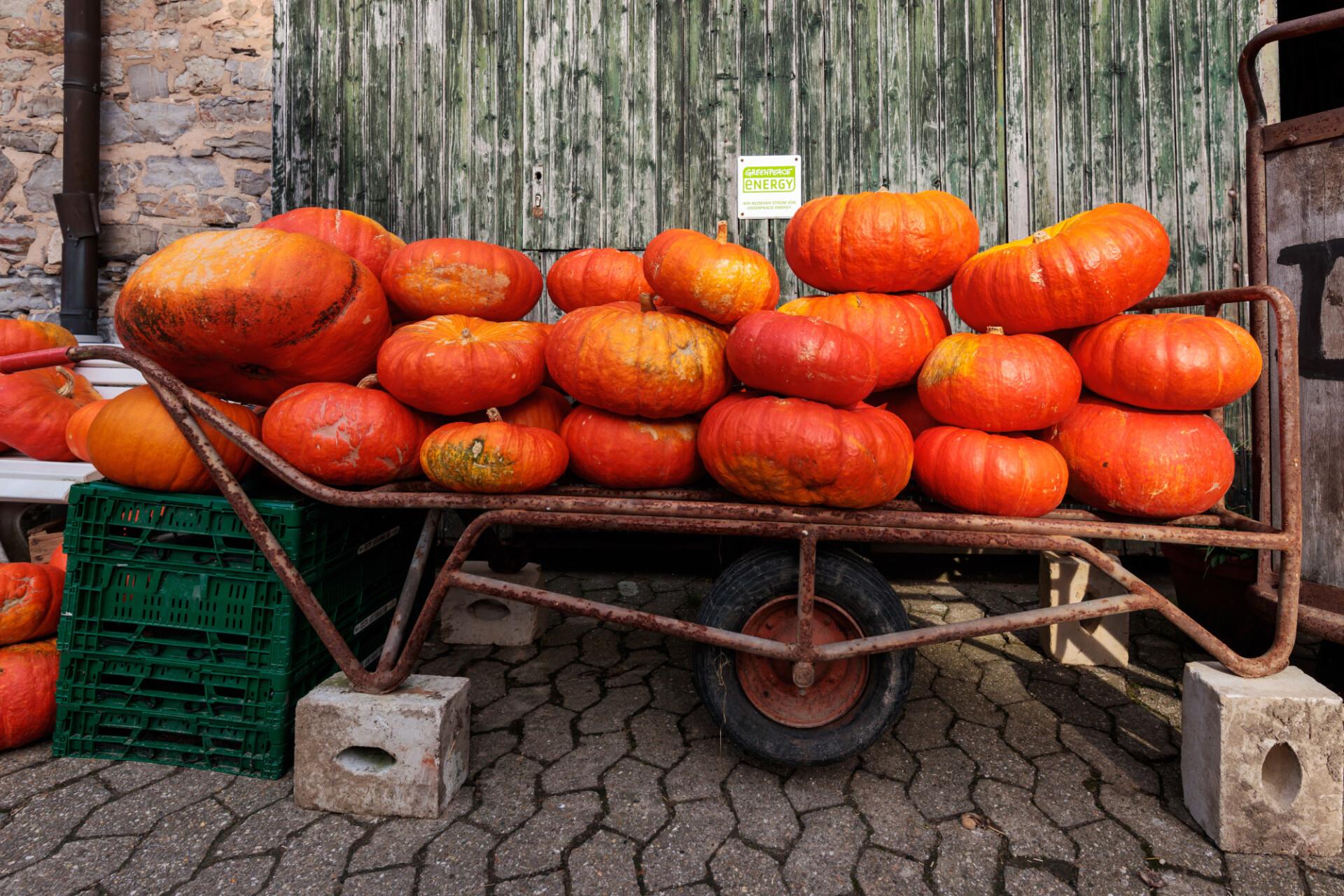 pumpkins on a trailer