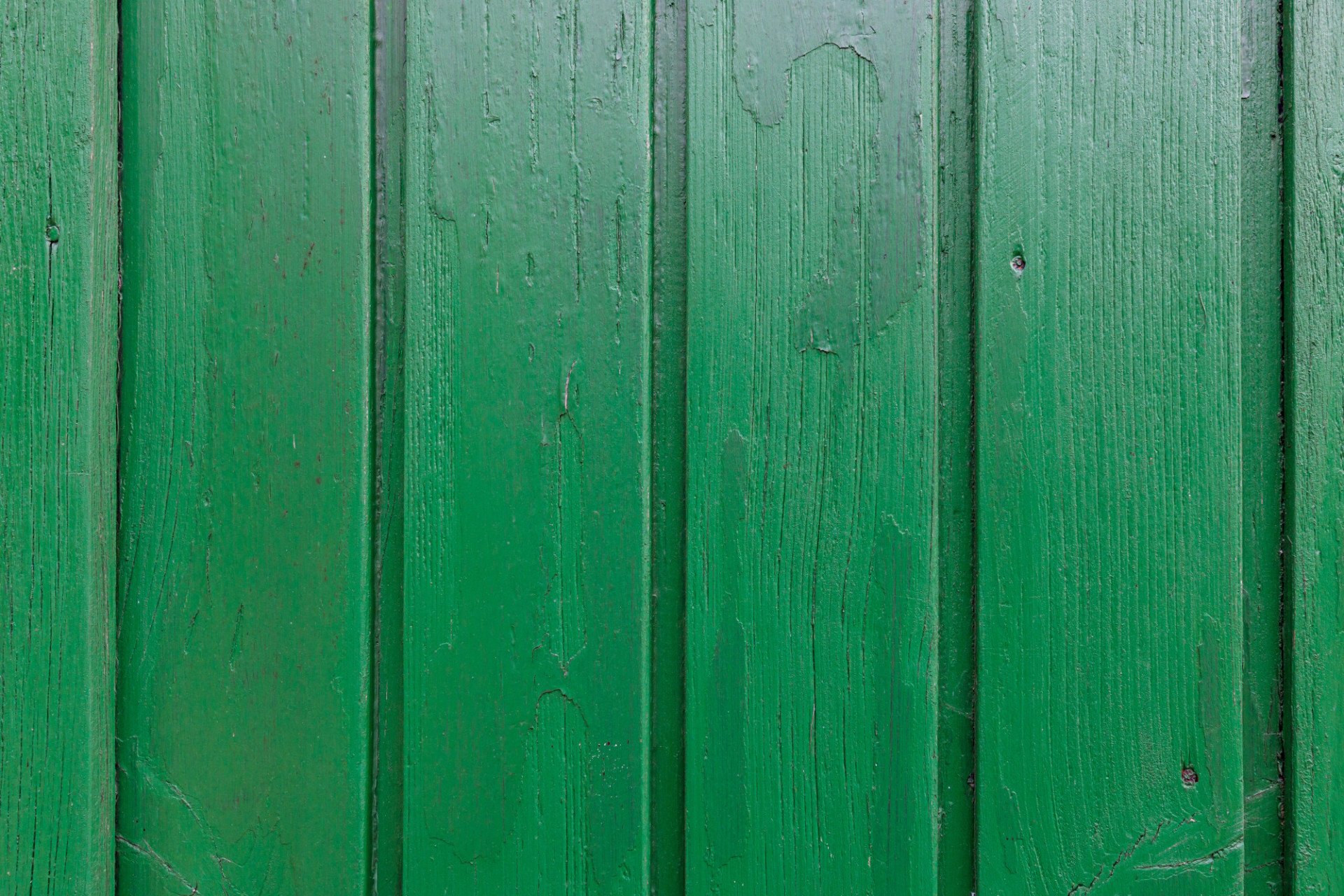 Green wooden wall texture