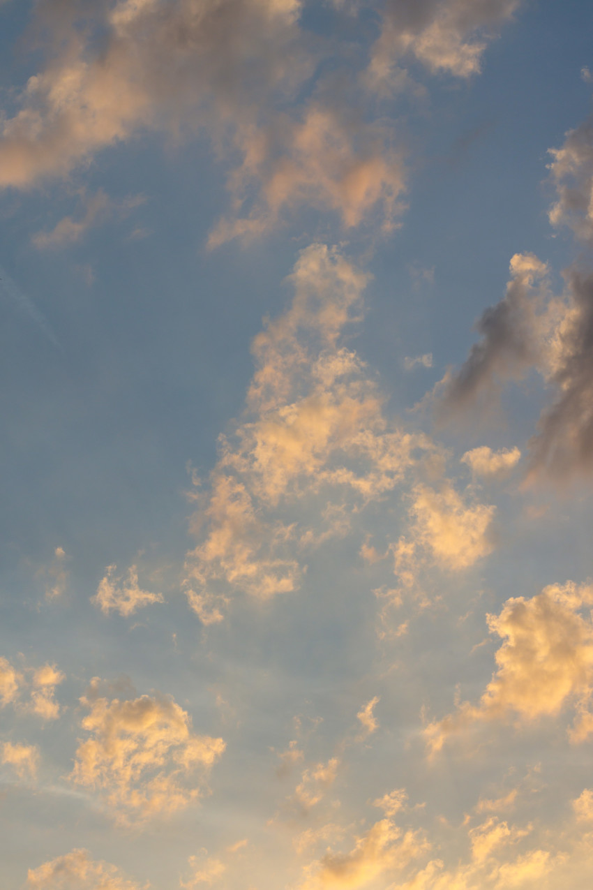 Vertically photographed sky at evening time