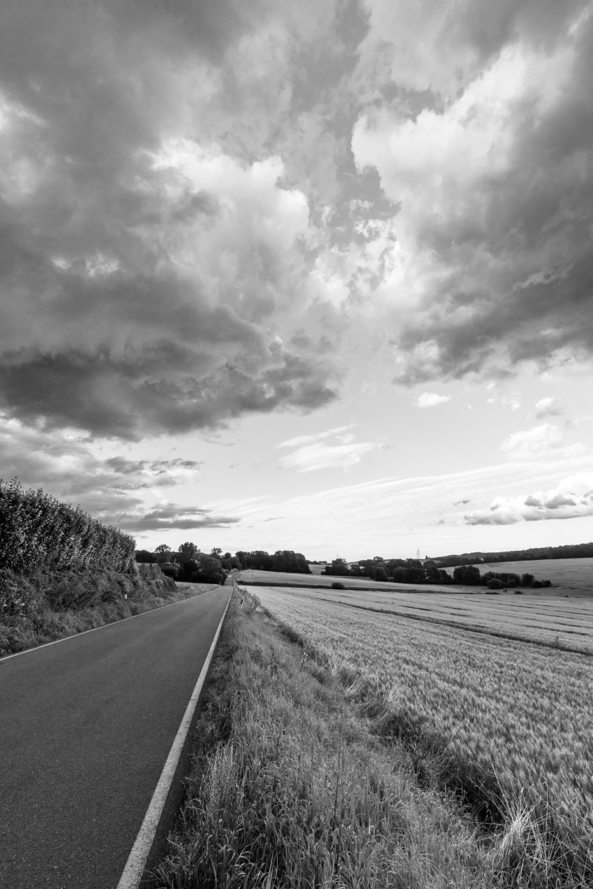 Black and white Vertical rural landscape with country road