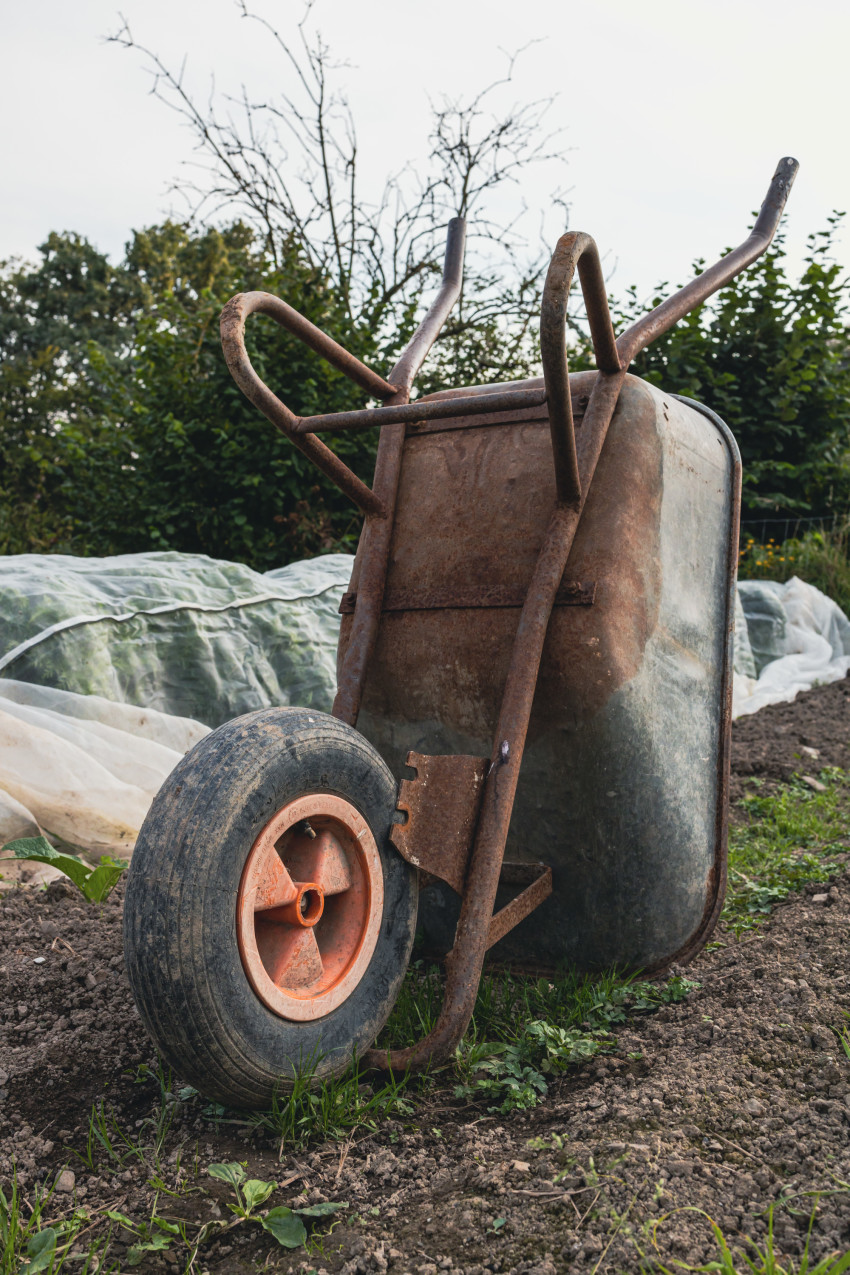 Wheelbarrow on a field