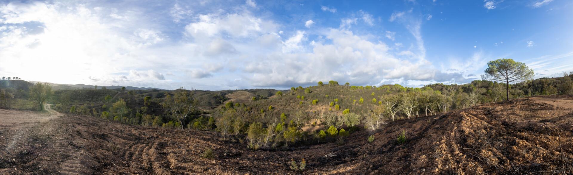 Untouched nature landscape in Portugal