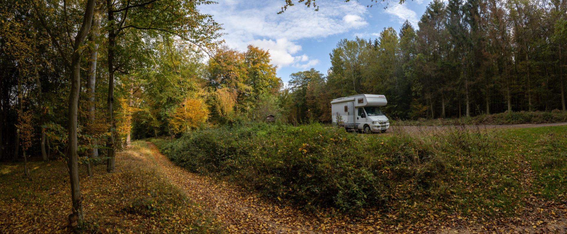 Caravan in the forest
