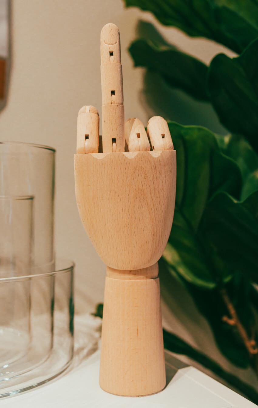 Wooden model hand shows middle finger