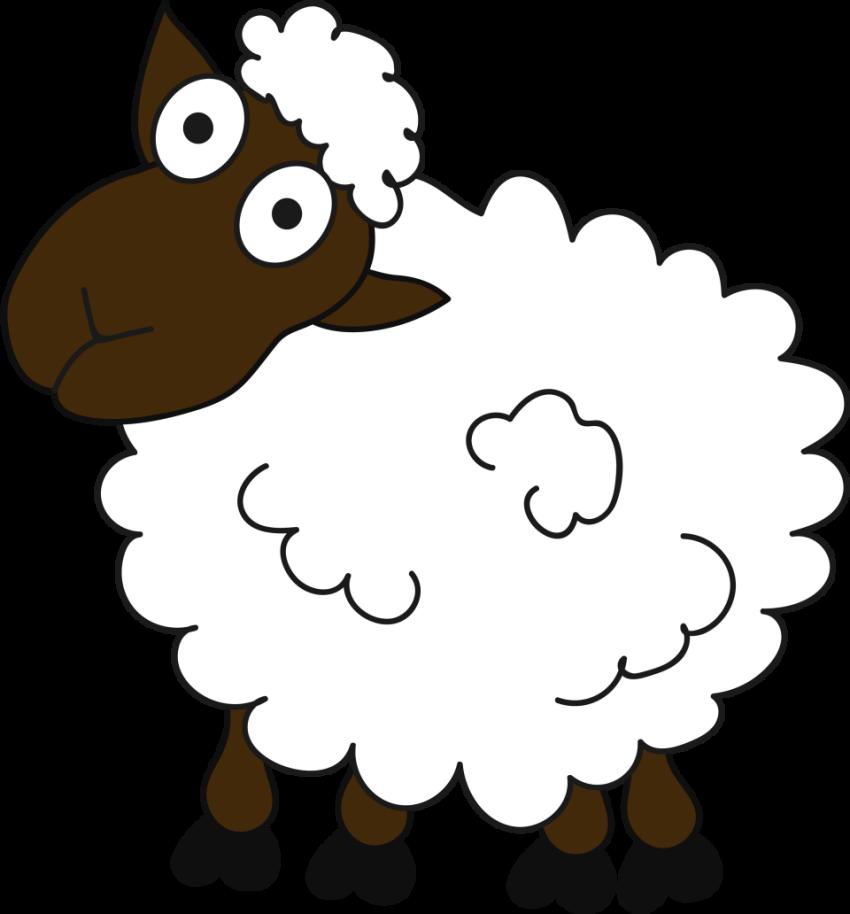 sheep vector and png