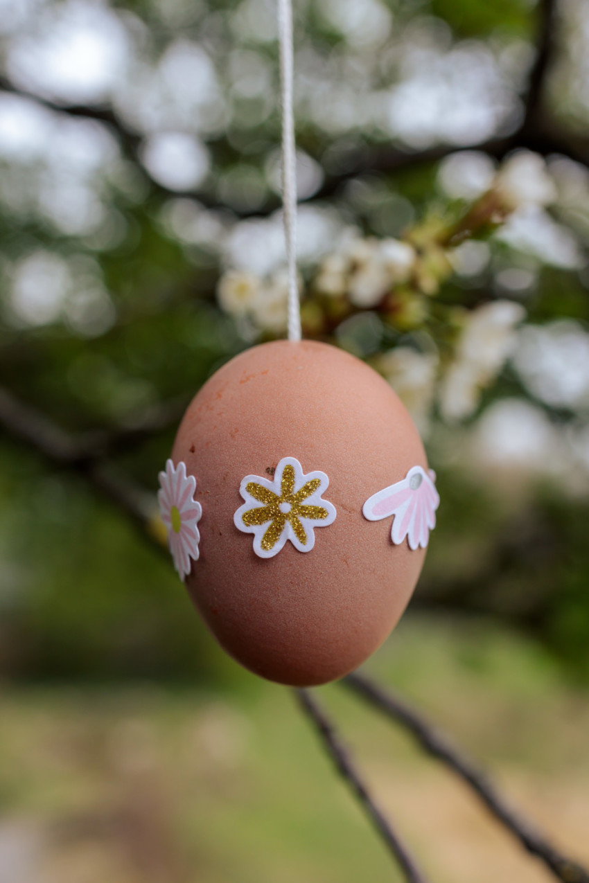Nicely decorated Easter egg hangs in the garden