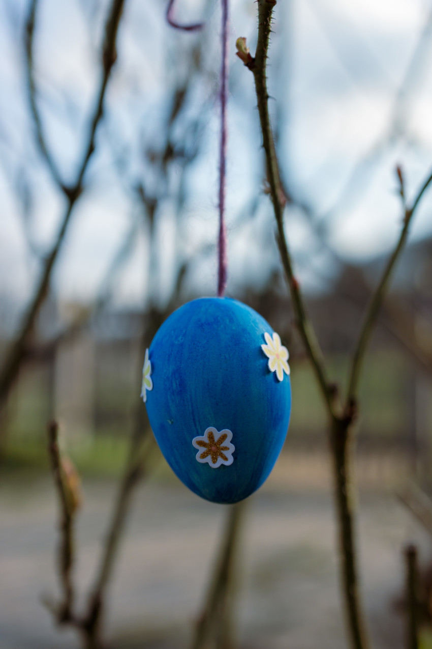 Blue decorated Easter egg hangs in the garden