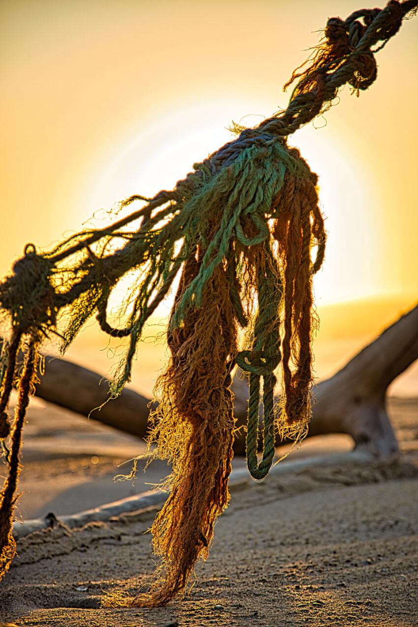 Fishing net flotsam