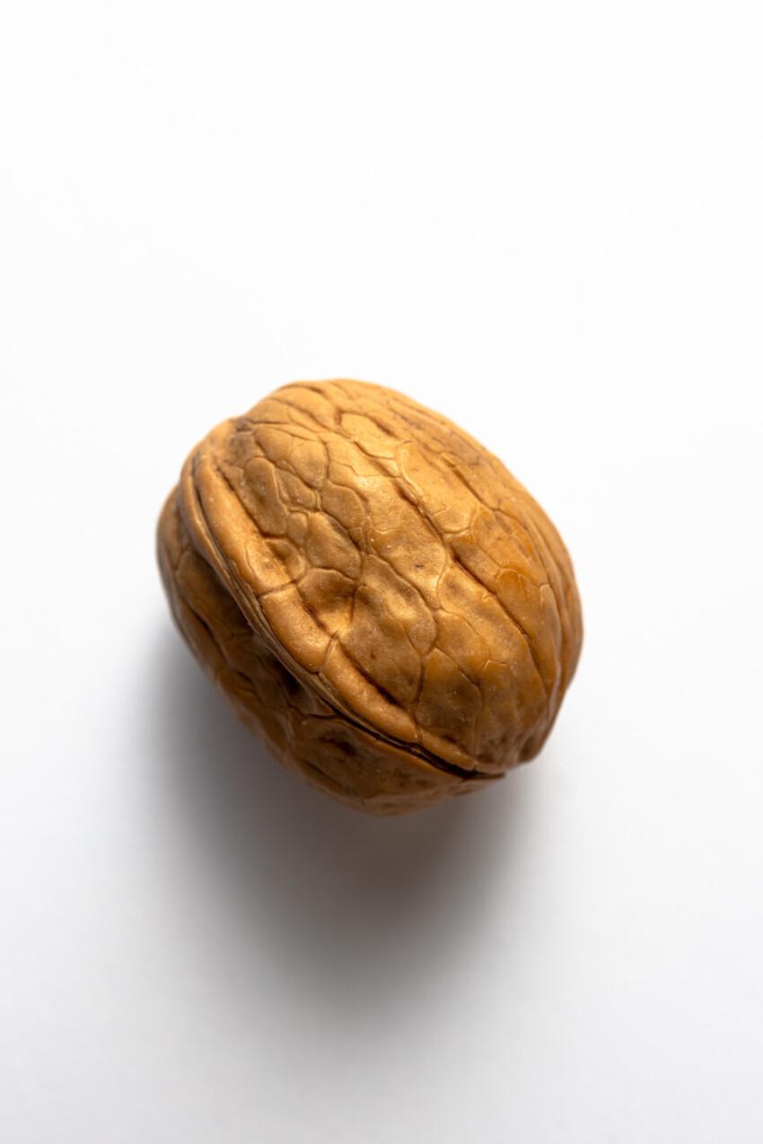 One walnut on white background